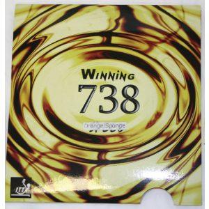p-3528-winning738.jpg