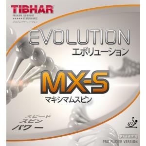 p-6225-evolution_mxs.jpg