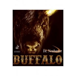 dr-neubauer-buffalo