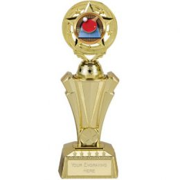 21. Project gold plastic trophy <br>RRP £9.50 <b>SALE PRICE £7.60</b>