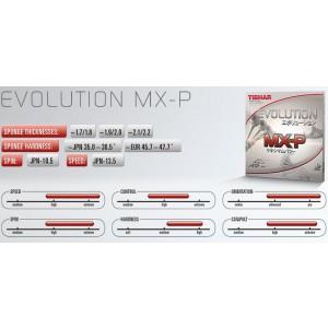 tibhar-evolution-mx-p-stats